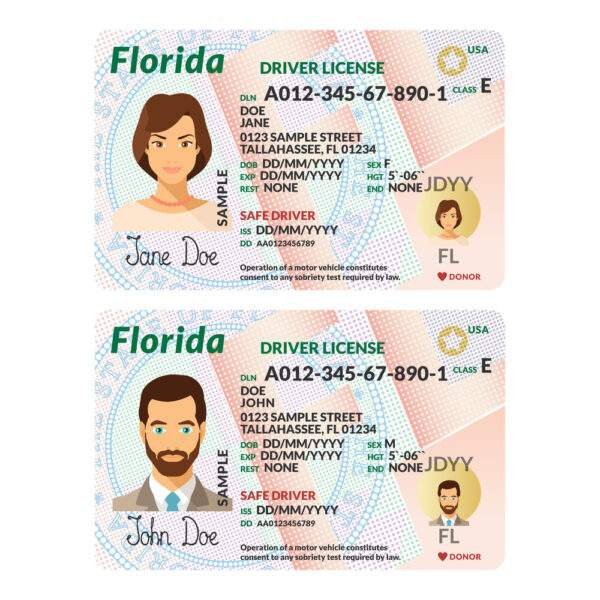 Real UAE Driver's License