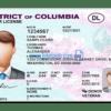 Colombia driver's License