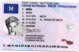 Malta driver card