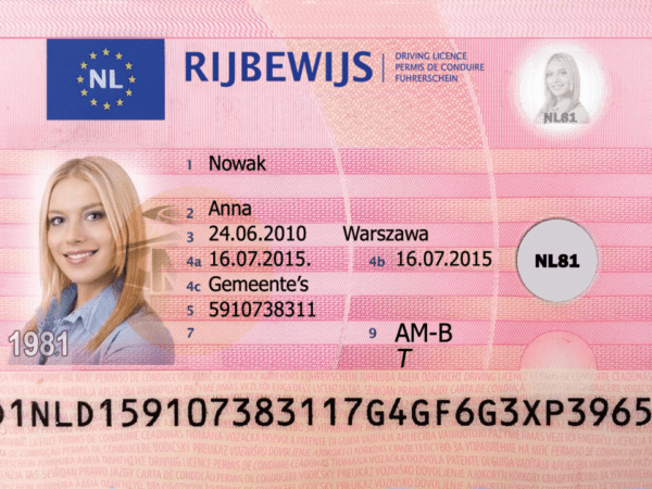Netherlands Fake Driver's License for Sale
