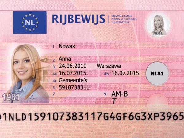 Netherlands Driver's License