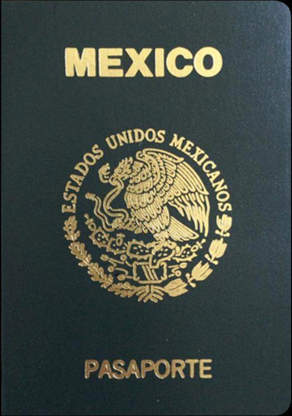 Fake Mexican Passport