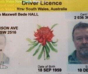Fake New South Wales driver's license