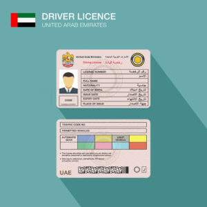 United Arab Emirates Fake Driver's License for Sale