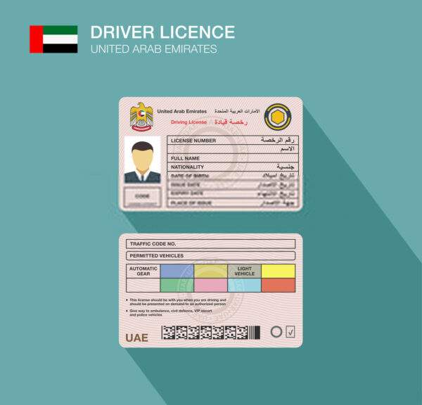 United Arab Emirates Fake Driver's License for Sale